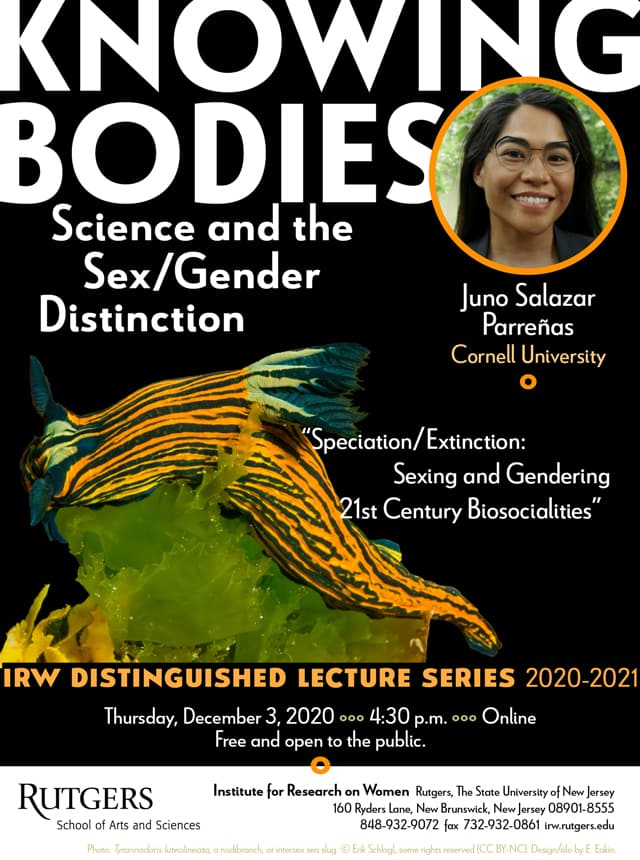 IRW Distinguished Lecture Series